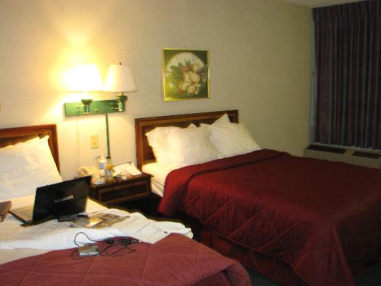 Comfort Inn Virginia Horse Center: My room, not exquisite, but was comfortable enough.