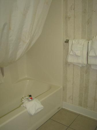Comfort Inn Virginia Horse Center: The bathroom was VERY clean and ...