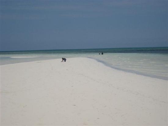 Freeport Grand Bahama Island Fortune Beach