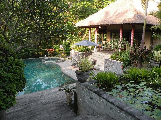 Kusuma Sari Villa & Spa: Pool and gardens