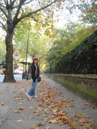 Bayswater: autumn in london