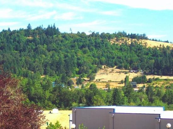 Eugene, OR: Foot hill from Center Building at LCC