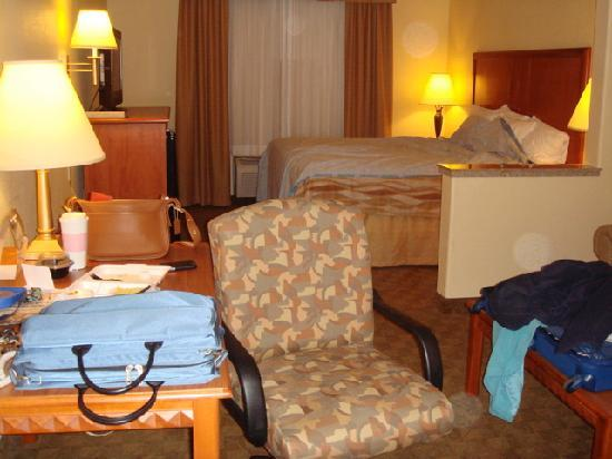 Best Western Plus Schulenburg Inn & Suites : Interior of a king room with sofa bed and desk