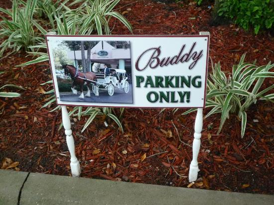 Hilton Ocala: Buddy's parking spot