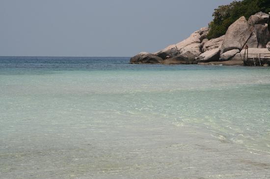 Mare meraviglioso foto di nangyuan island dive resort koh tao tripadvisor - Nangyuan island dive resort tripadvisor ...