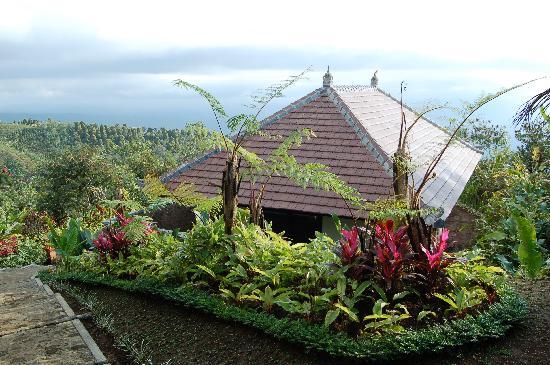 Munduk Moding Plantation: garden villa