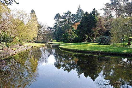 National Botanic Gardens: River Tolka