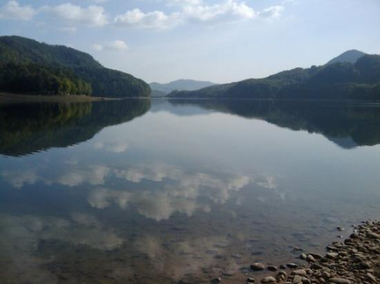 Bilde fra Baia Mare