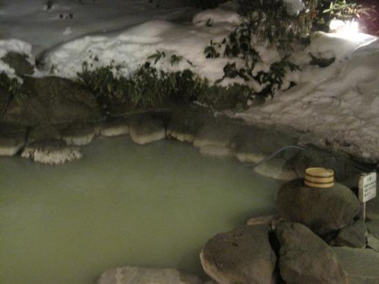 Okunikko Konishi Hotel: outdoor hot spring (male)