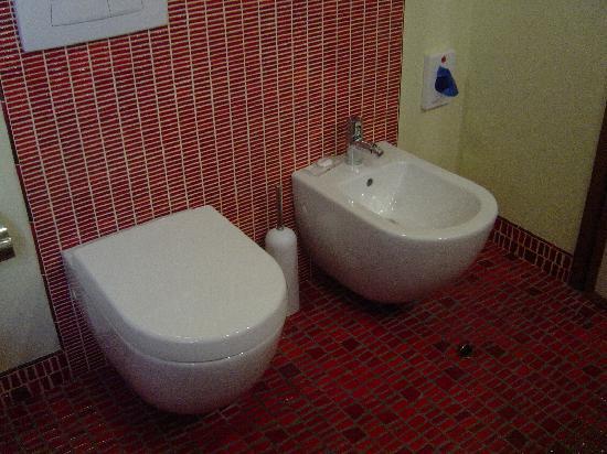 Il Guelfo Bianco: beautiful tiles & my good friend the bidet..grrrr!