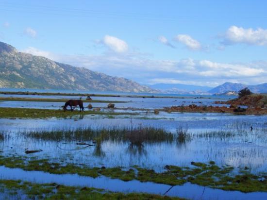 Futaleufu, Şili: Río Murta, carretera austral, Chile