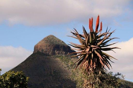 Graaff-Reinet, แอฟริกาใต้: Spandau Kop