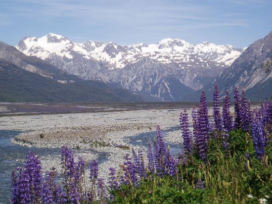 New Zealand: Arthur's Pass