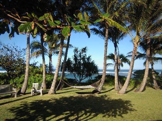 Hale Makai Cottages: View from dinner table, lanai