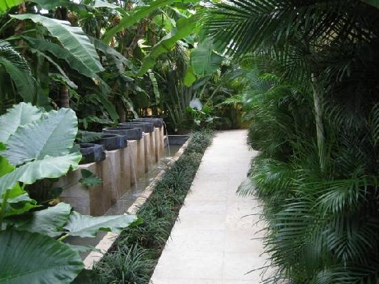 Capella Ixtapa: 6th floor walk