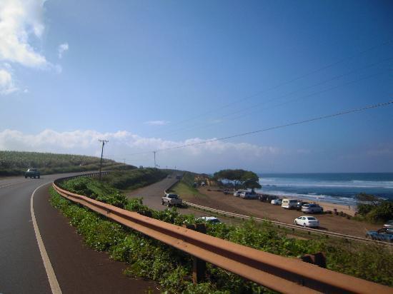 Paia, Havai: ホキパ