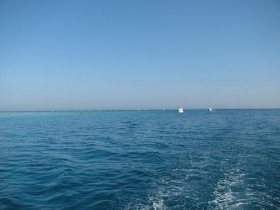 Soma Bay, Egypt: insirati spre casa