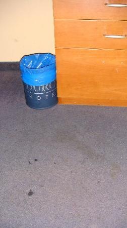 Le Duroy Hotel : Carpet - The garbage bag was the only clean item in the room