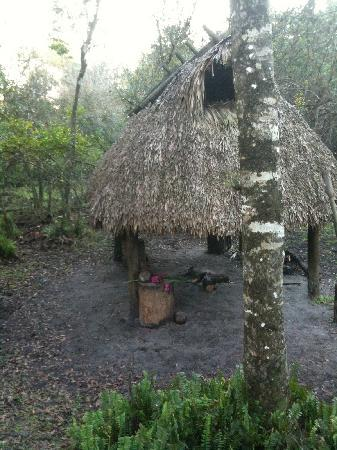 Billie Swamp Safari: Traditional Seminole chickee cooking hut