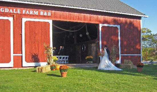 Springdale Farm Bed & Breakfast: Ask us about weddings
