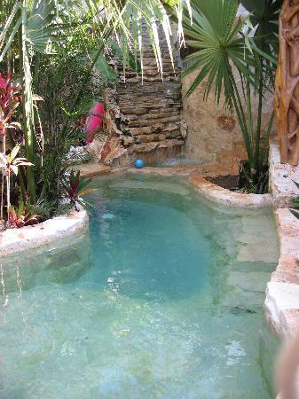 La Selva Mariposa: The pool outside rooms 1 and 2