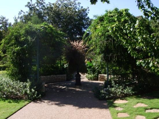Fort worth botanical gardens picture of fort worth botanic garden fort worth tripadvisor for Fort worth botanical gardens hours