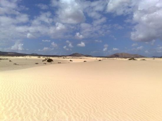 Puerto del Rosario, إسبانيا: dune di corralejo