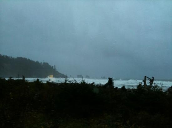 Quileute Indian Reservation : Good Morning First Beach!