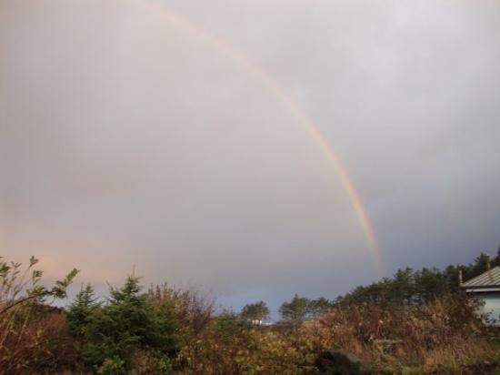 Quileute Indian Reservation: Rainbow....perfect arch....all the colors...