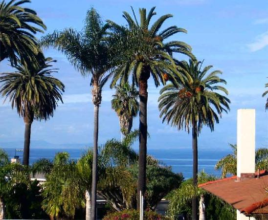 The Bed & Breakfast Inn at La Jolla: Ocean View from Penthouse