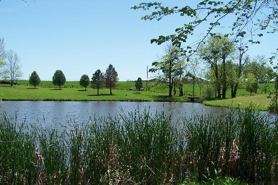 Odessa, MO: overview of pond