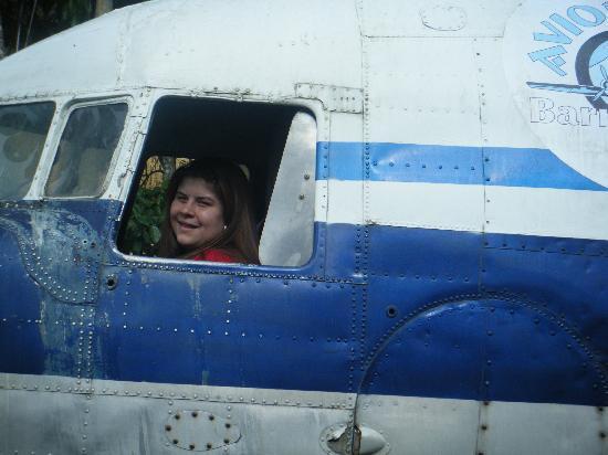 Aviones : en el avion