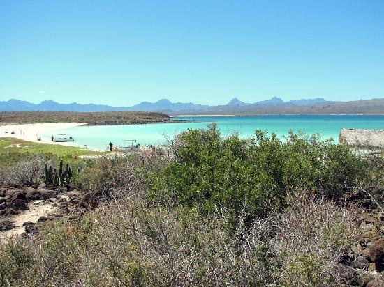 Posada de las Flores Loreto: easy to get to the island beach