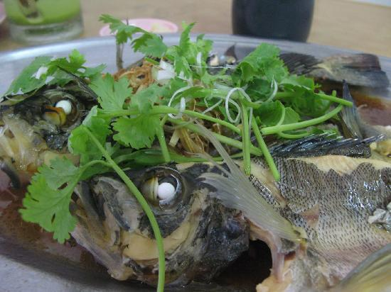 Clearwater Sanctuary Golf Resort: good catch made good dinner