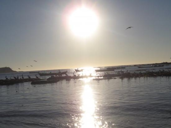 Algarrobo, Chile: Hermoso sol ...