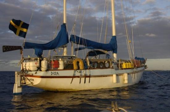 Palmerston Island, Cook Eilanden: disa som tar oss över havet i alla väder