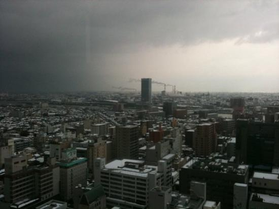 View from NEXT 21 on Niigata city.