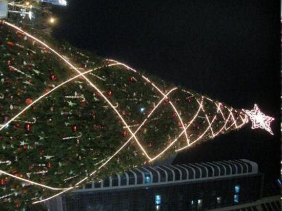 Busan, South Korea: When I was small.... the christmas tress were tall.....