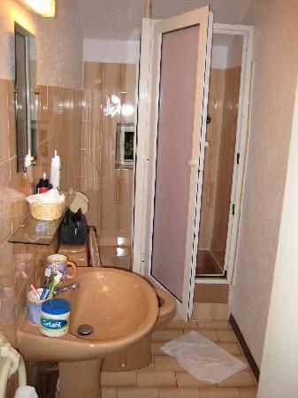 Domaine du Majastre : il bagno così  in Italia si dice cesso