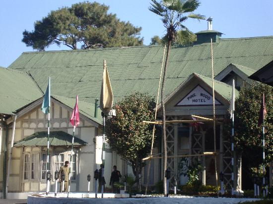 Pinewood Hotel: frontal area