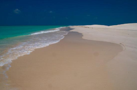 Socotra Island - Qalancia
