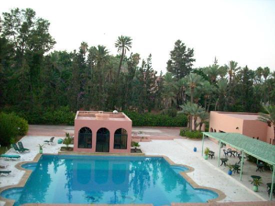 Hotel Sahara Inn: piscine pas toujours propre ( les tourterelles y viennent pas centaines)