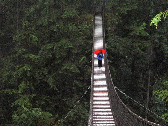Ванкувер, Канада: Lynn Canyon Free Bridge