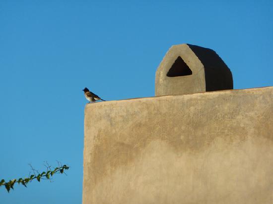 Riad Dar One: Détail sur la terrace du Dar One