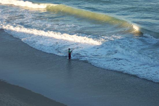 Take your surf fishing rod picture of vistana beach for Beach fishing florida