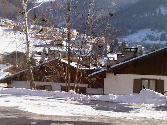 Hotel La Soldanella : Vista dalla sala ristorante dell'hotel