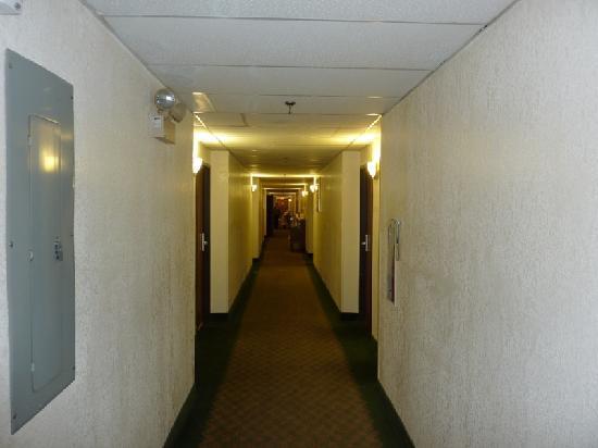 Super 8 Stamford/New York City Area: El pasillo