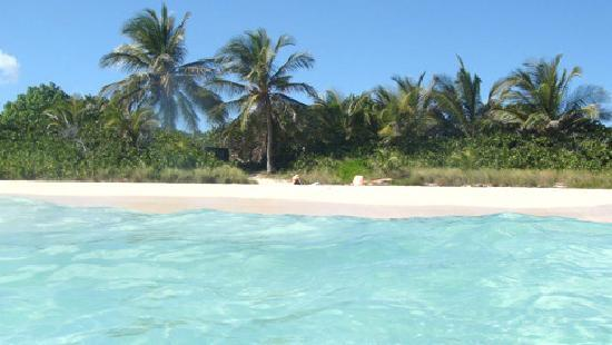 Vieques, Puerto Rico: secret beach, my favorite (pata prieta)