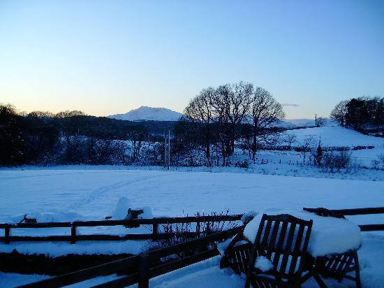 Llannerch Goch Luxury Cottages : View from Tryfan Cottage...