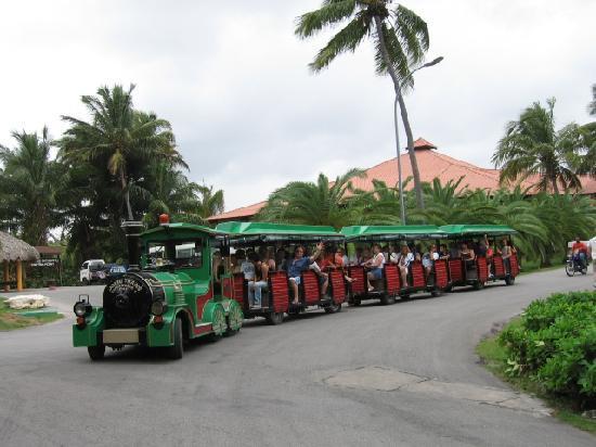 TRS Turquesa Hotel: train to go around